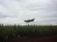 Aplicação Aérea na cultura de milho_1