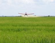 Aplicação fungicida com eletrostático em arroz